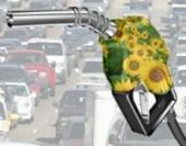 biocarburant biodiesel