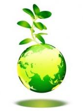 statistiques environnement